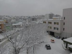 20151124雪