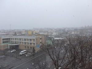 20160411雪景色