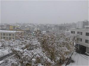 20161105雪景色